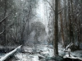 drawing-forest